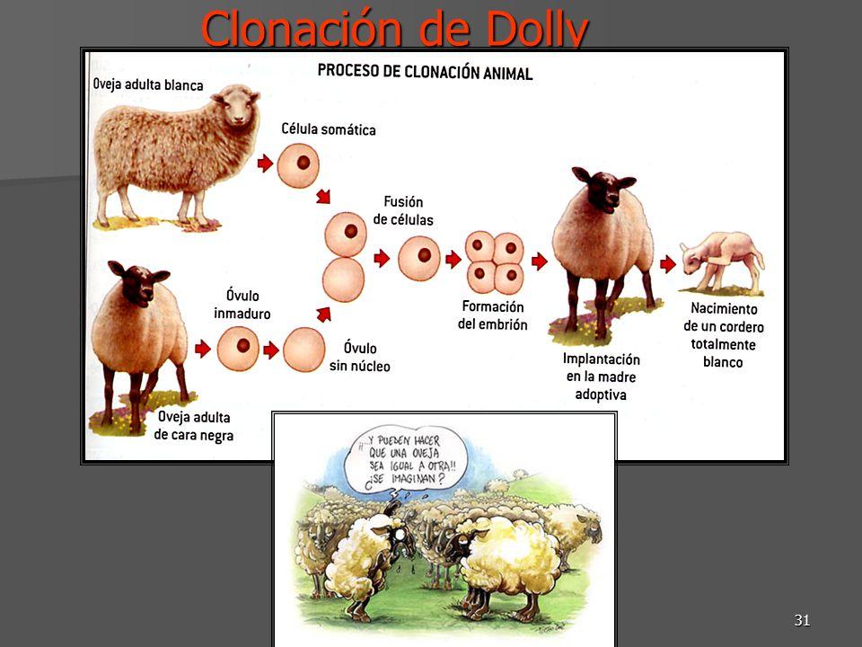 Clonación de Dolly DRM-Biotecnología SB 2012