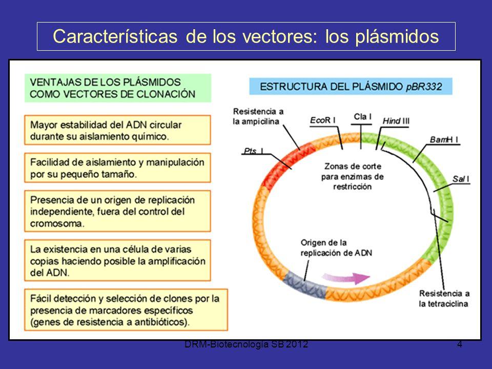 Características de los vectores: los plásmidos