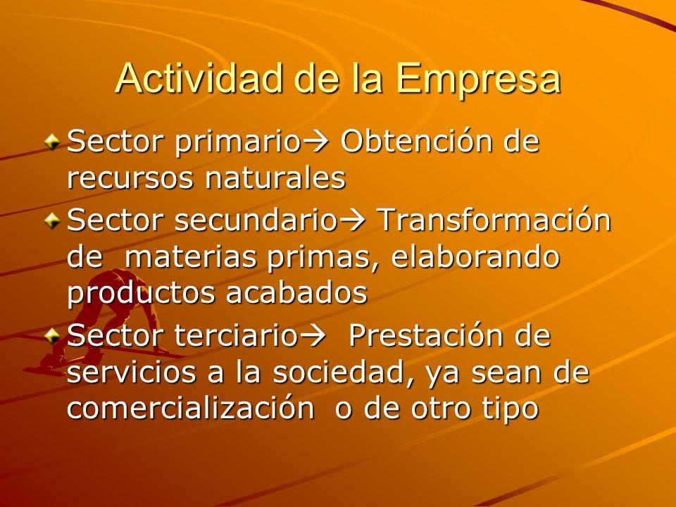 Actividad de la Empresa
