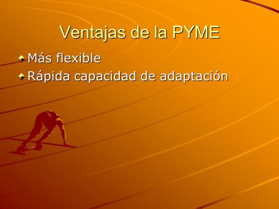 Ventajas de la PYME Más flexible Rápida capacidad de adaptación