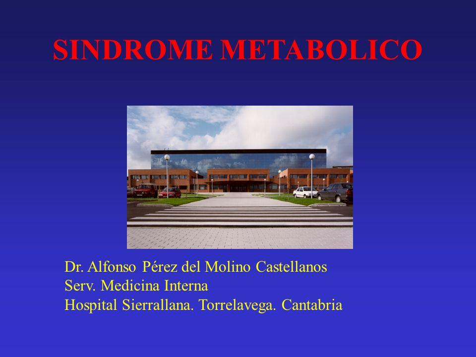 SINDROME METABOLICO Dr. Alfonso Pérez del Molino Castellanos
