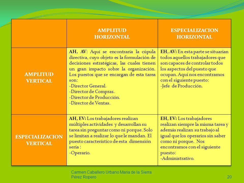 ESPECIALIZACION HORIZONTAL ESPECIALIZACION VERTICAL