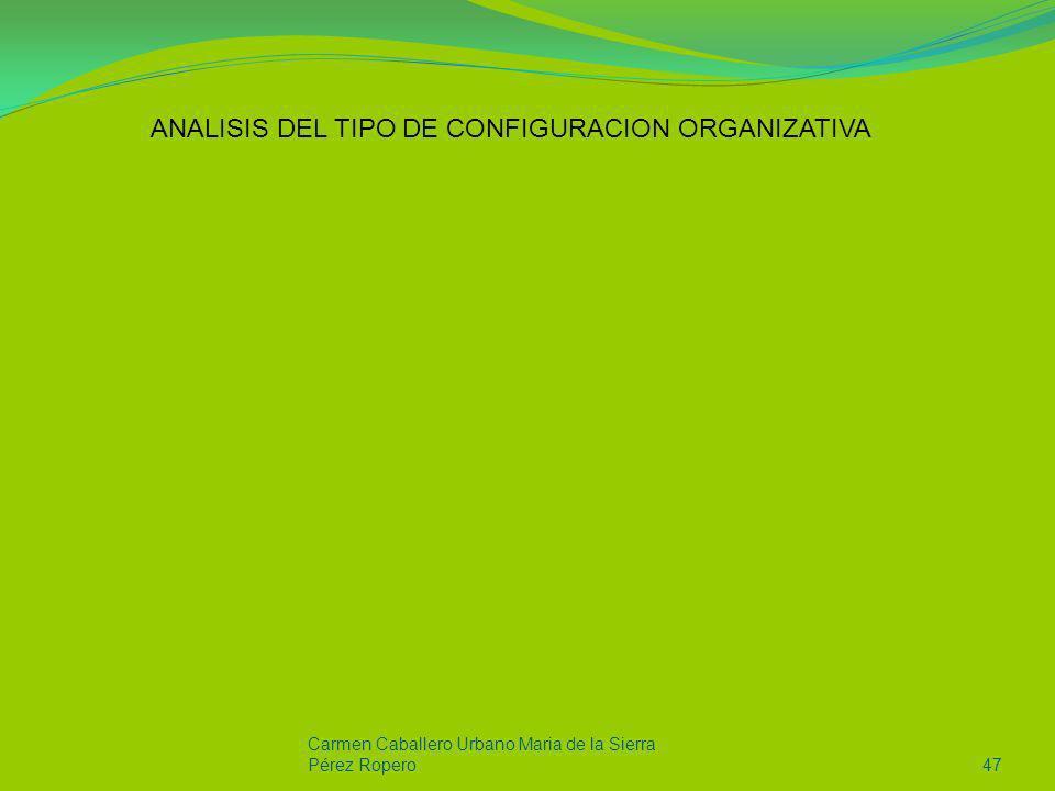 ANALISIS DEL TIPO DE CONFIGURACION ORGANIZATIVA