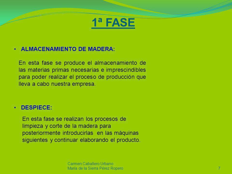 1ª FASE ALMACENAMIENTO DE MADERA: