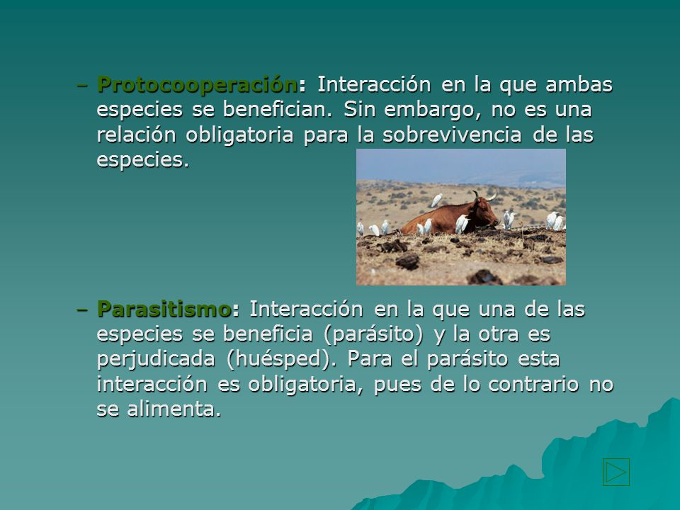 Protocooperación: Interacción en la que ambas especies se benefician