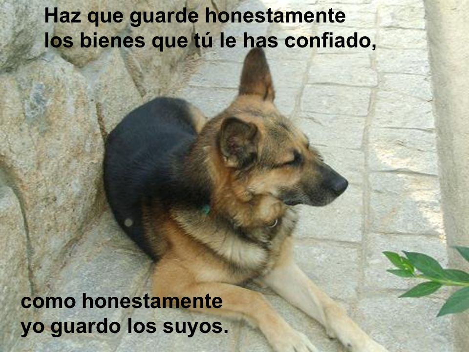 Haz que guarde honestamente