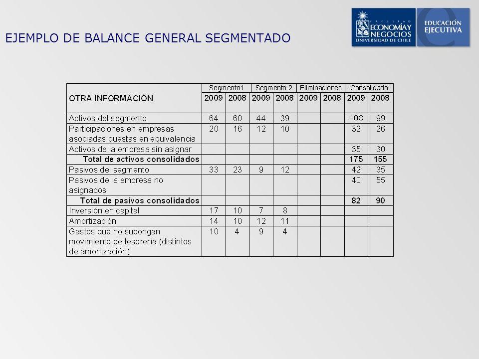 EJEMPLO DE BALANCE GENERAL SEGMENTADO