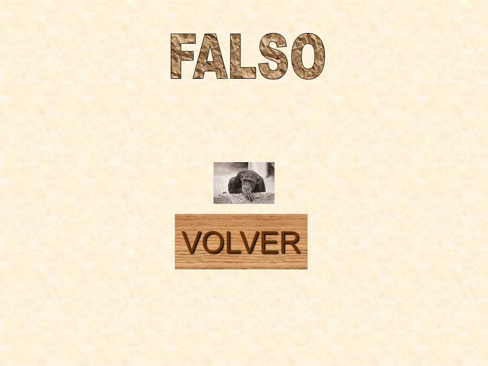 FALSO VOLVER