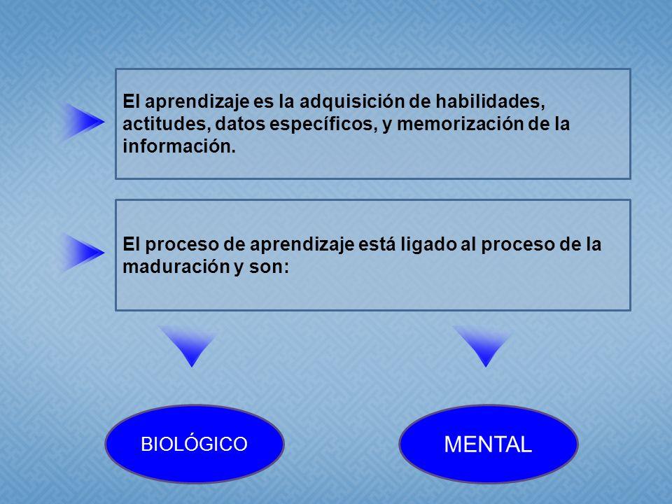 El aprendizaje es la adquisición de habilidades, actitudes, datos específicos, y memorización de la información.