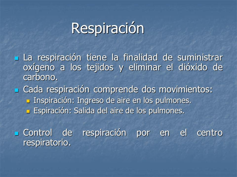 Respiración La respiración tiene la finalidad de suministrar oxígeno a los tejidos y eliminar el dióxido de carbono.