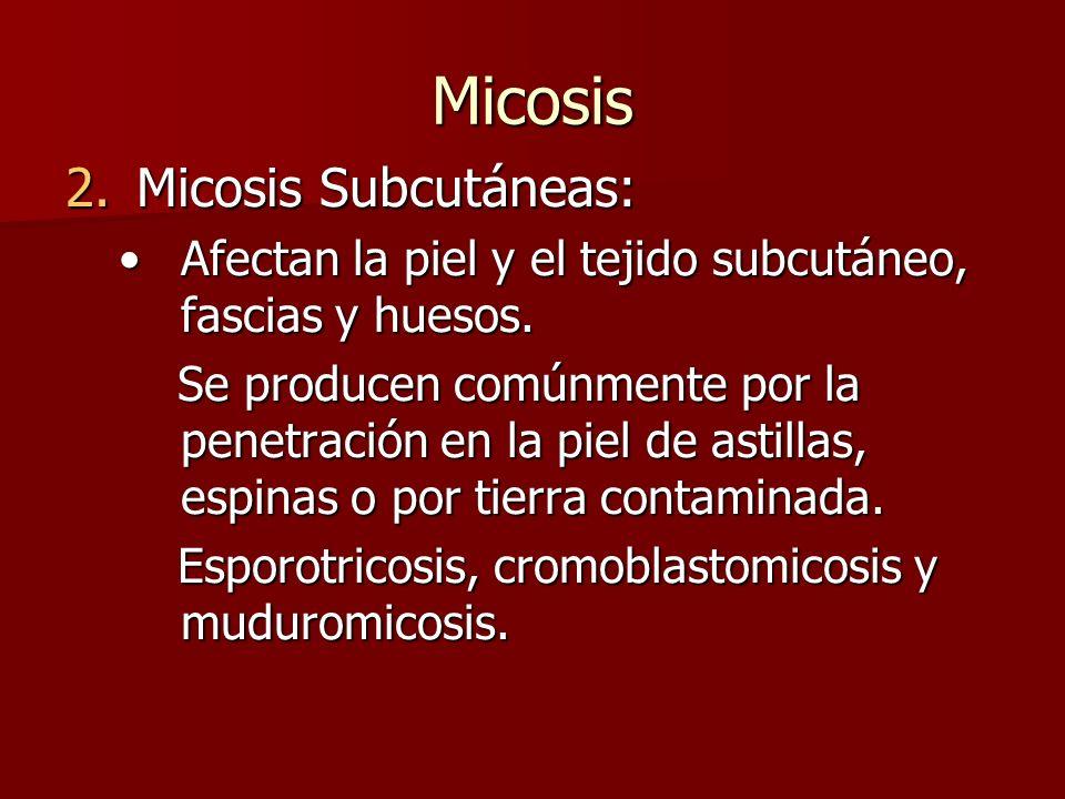 Micosis Micosis Subcutáneas: