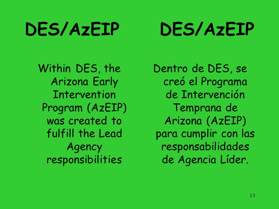 DES/AzEIPDES/AzEIP. Within DES, the Arizona Early Intervention Program (AzEIP) was created to fulfill the Lead Agency responsibilities.