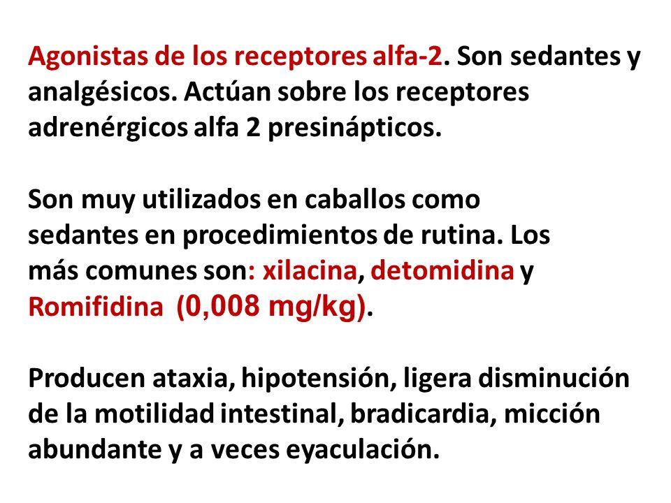Agonistas de los receptores alfa-2. Son sedantes y analgésicos