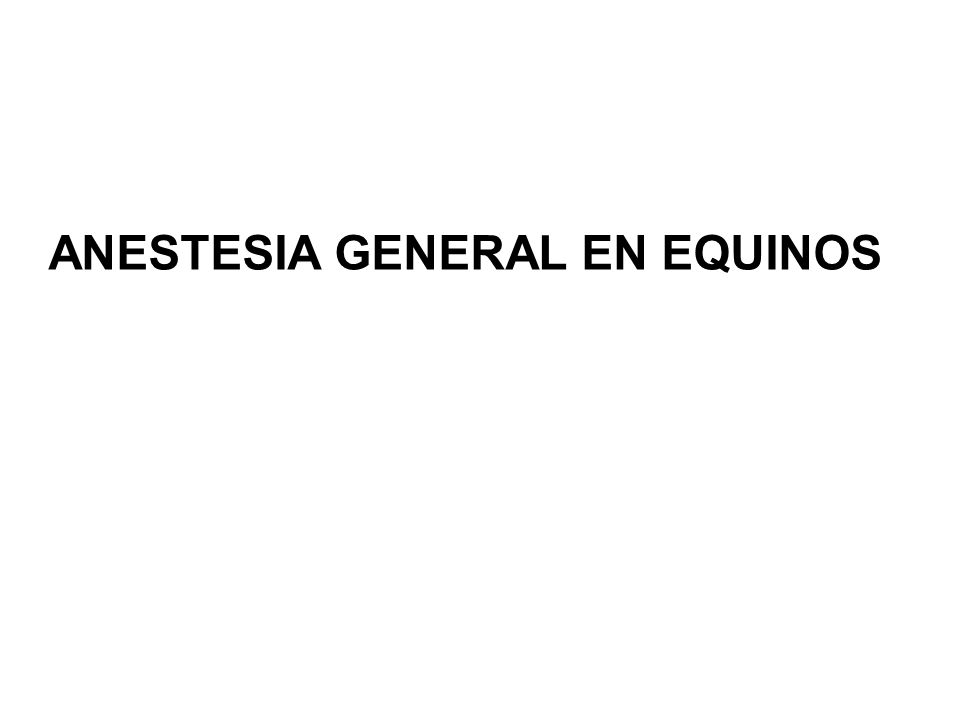 ANESTESIA GENERAL EN EQUINOS