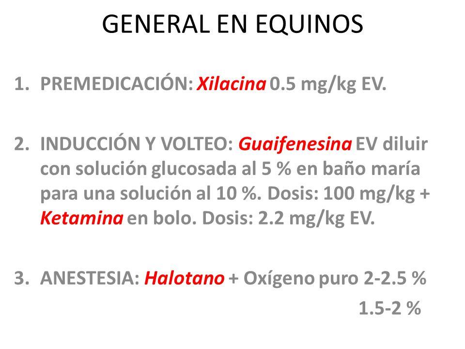 GENERAL EN EQUINOS PREMEDICACIÓN: Xilacina 0.5 mg/kg EV.