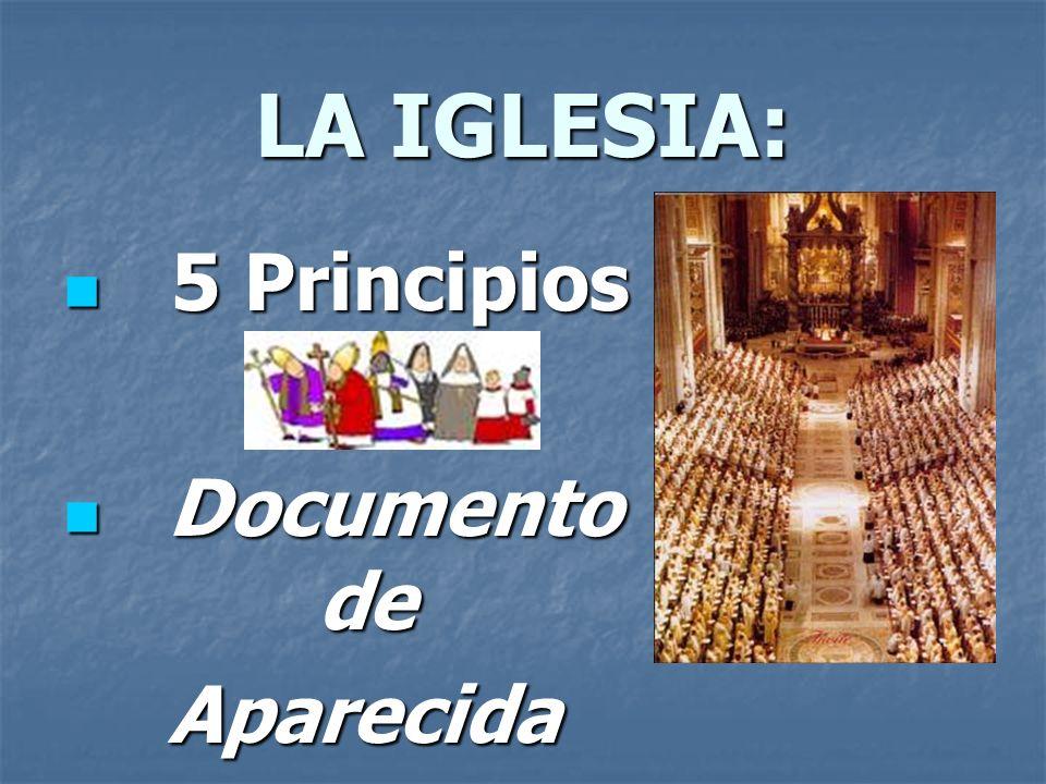 LA IGLESIA: 5 Principios Documento de Aparecida