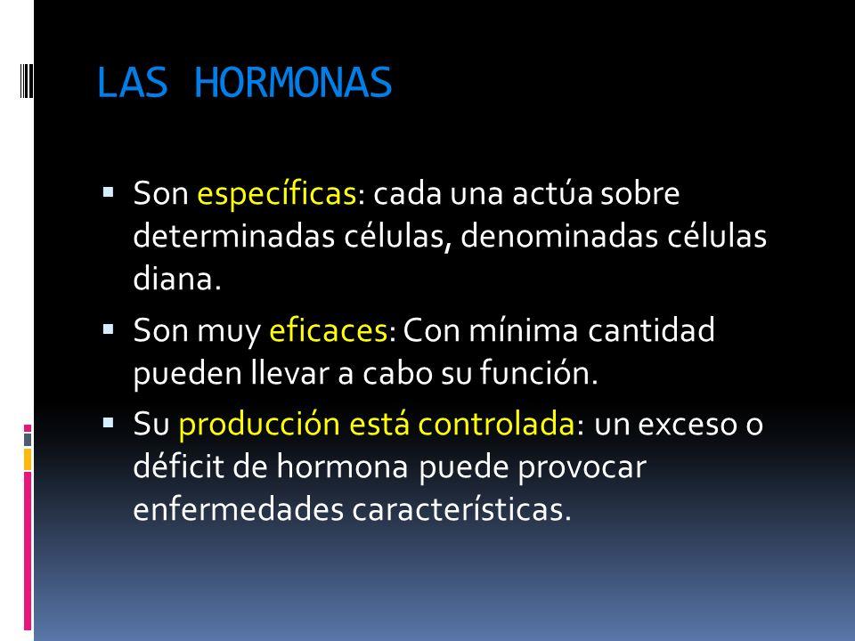 LAS HORMONASSon específicas: cada una actúa sobre determinadas células, denominadas células diana.