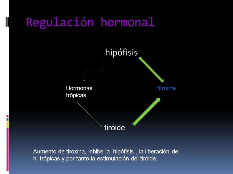 Regulación hormonal hipófisis tiróide Hormonas trópicas tiroxina