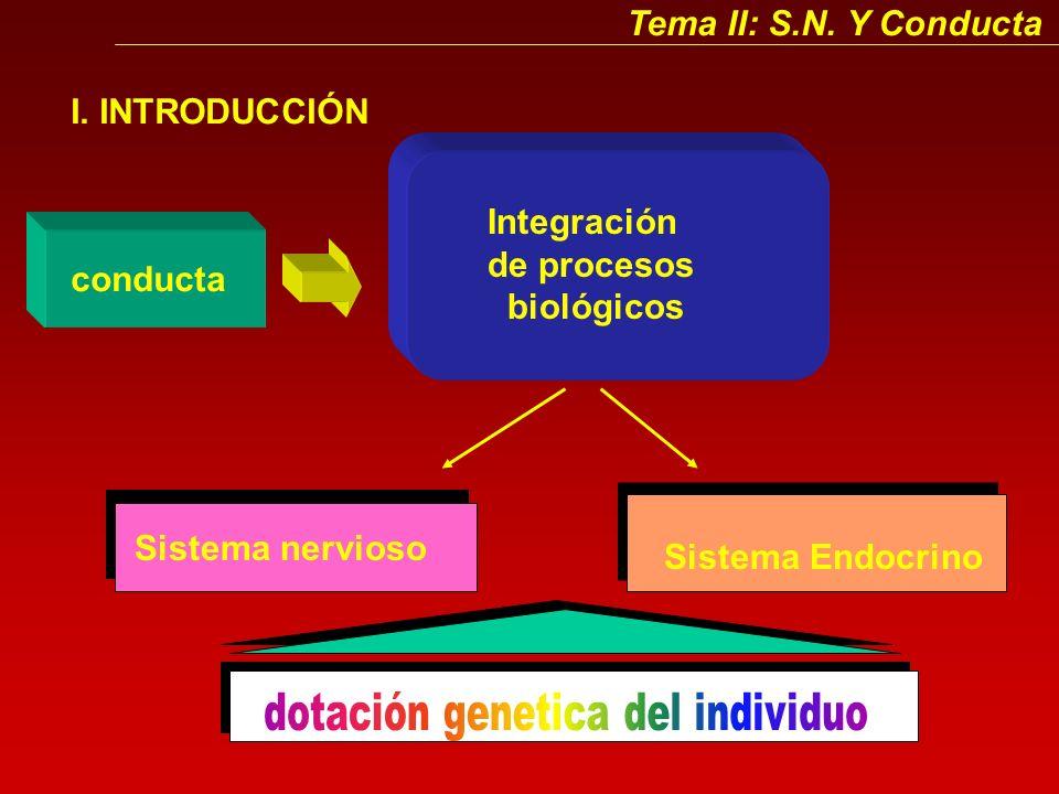dotación genetica del individuo