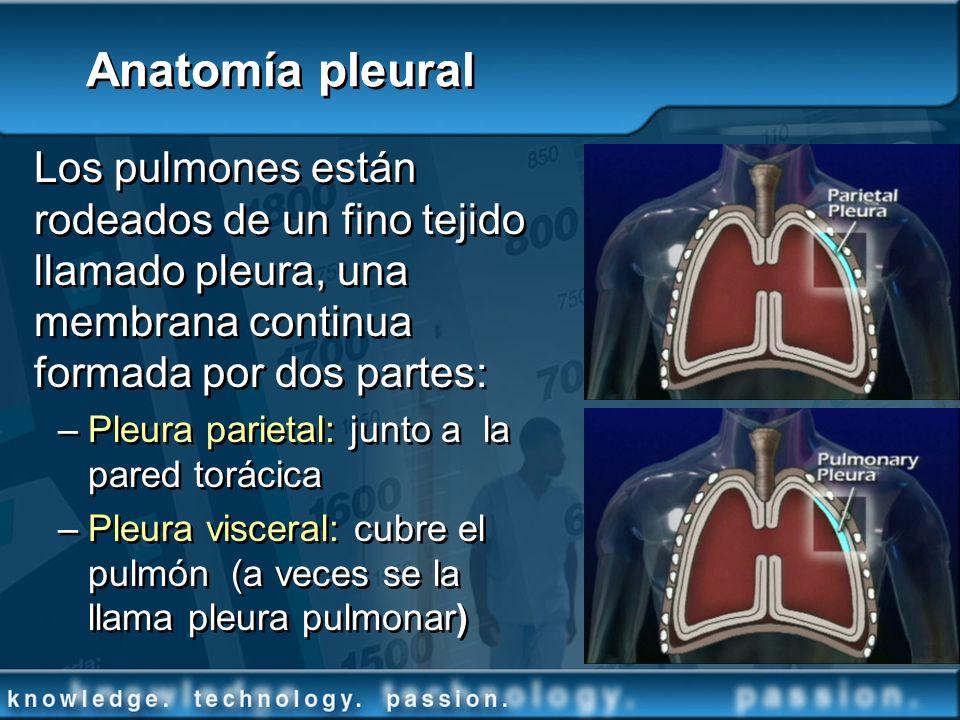 Anatomía pleural Los pulmones están rodeados de un fino tejido llamado pleura, una membrana continua formada por dos partes: