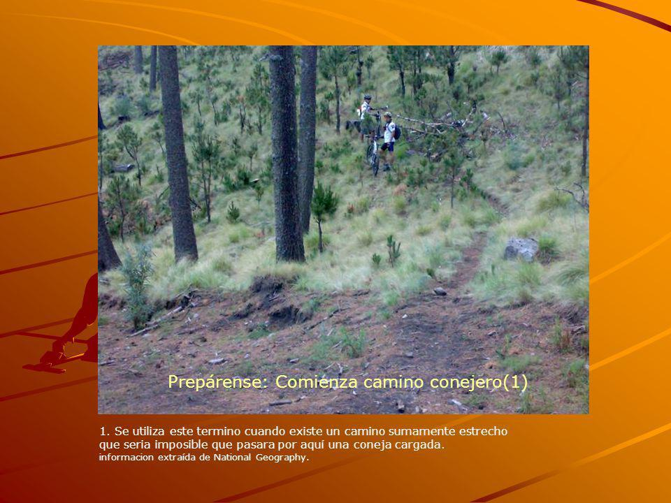 Prepárense: Comienza camino conejero(1)