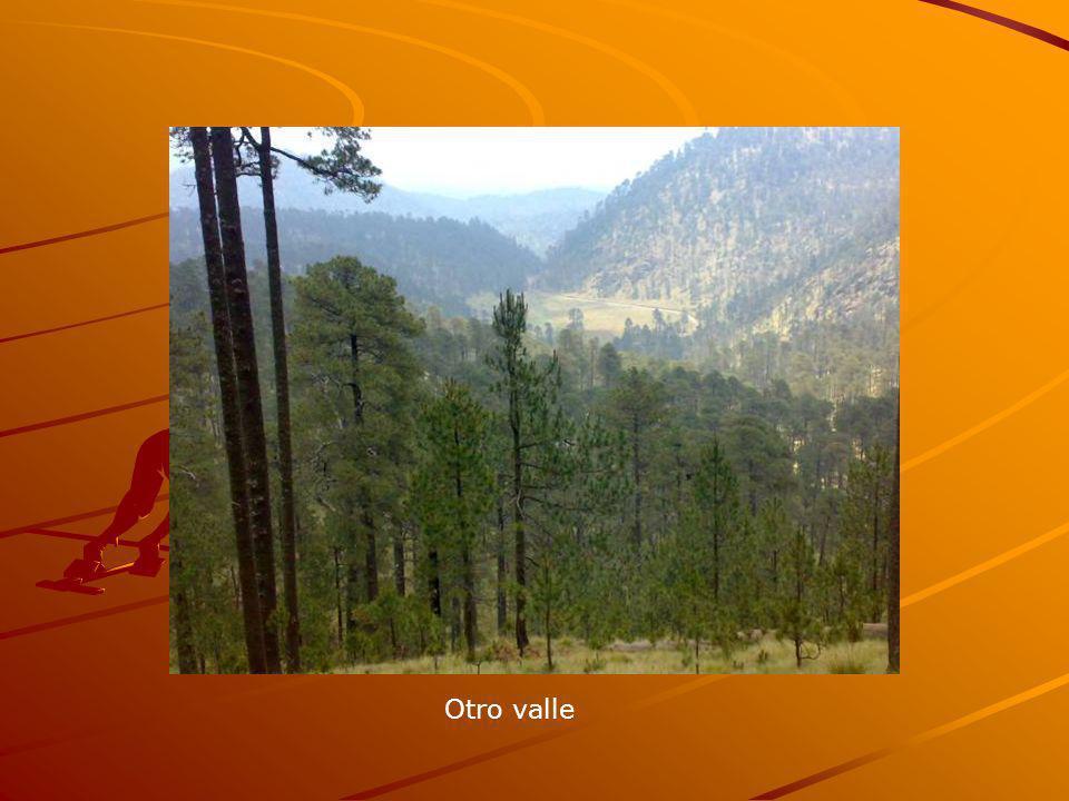 Otro valle