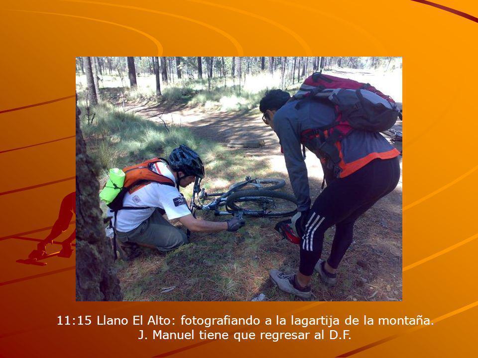 11:15 Llano El Alto: fotografiando a la lagartija de la montaña.