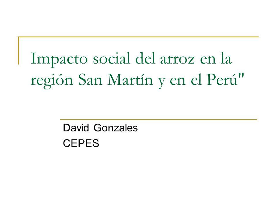 Impacto social del arroz en la región San Martín y en el Perú
