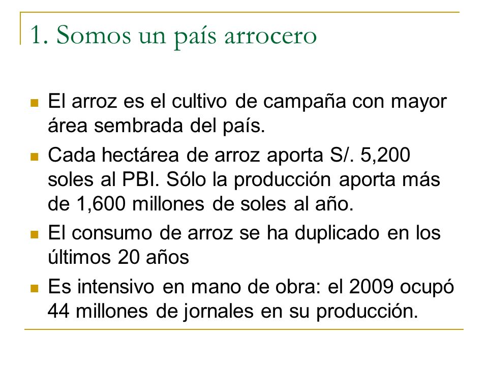 1. Somos un país arrocero El arroz es el cultivo de campaña con mayor área sembrada del país.