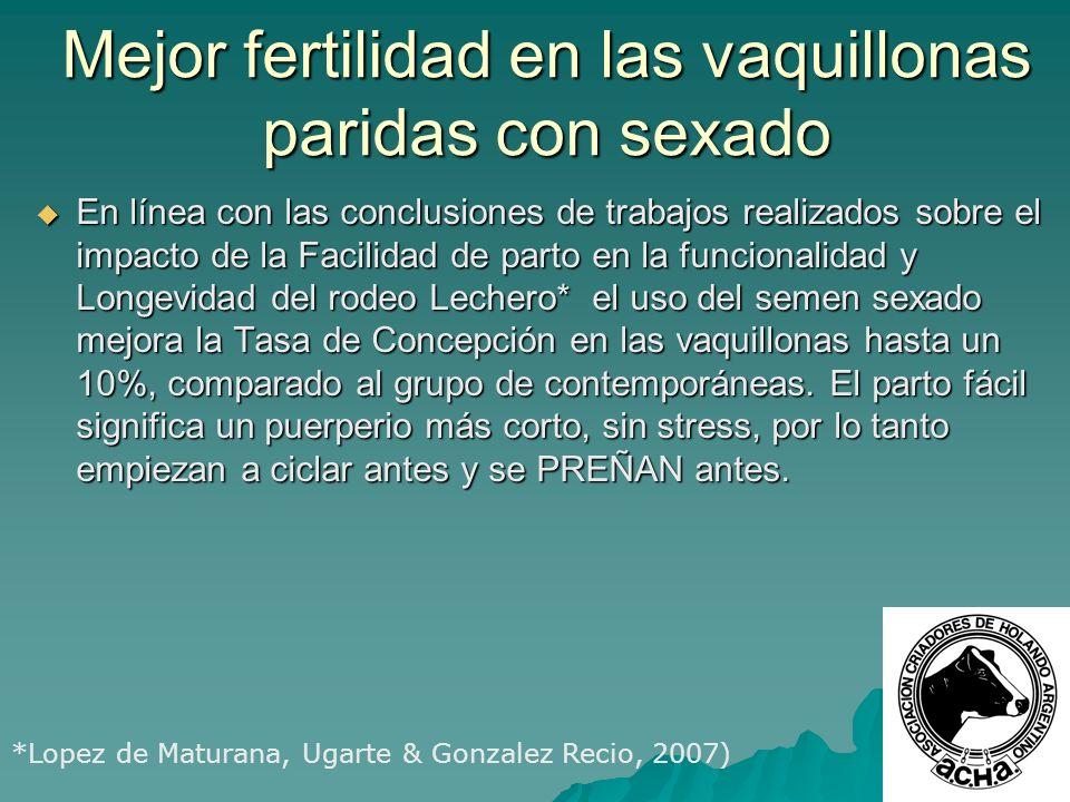 Mejor fertilidad en las vaquillonas paridas con sexado