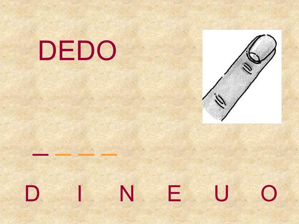 DEDO _ _ _ _ D I N E U O
