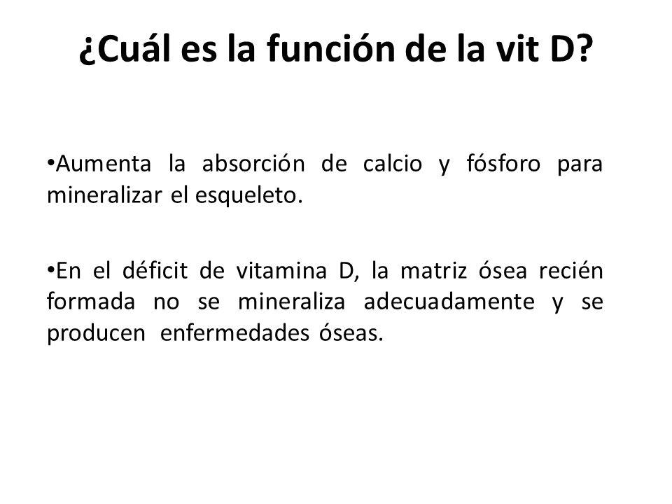 ¿Cuál es la función de la vit D