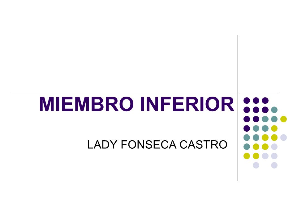 MIEMBRO INFERIOR LADY FONSECA CASTRO