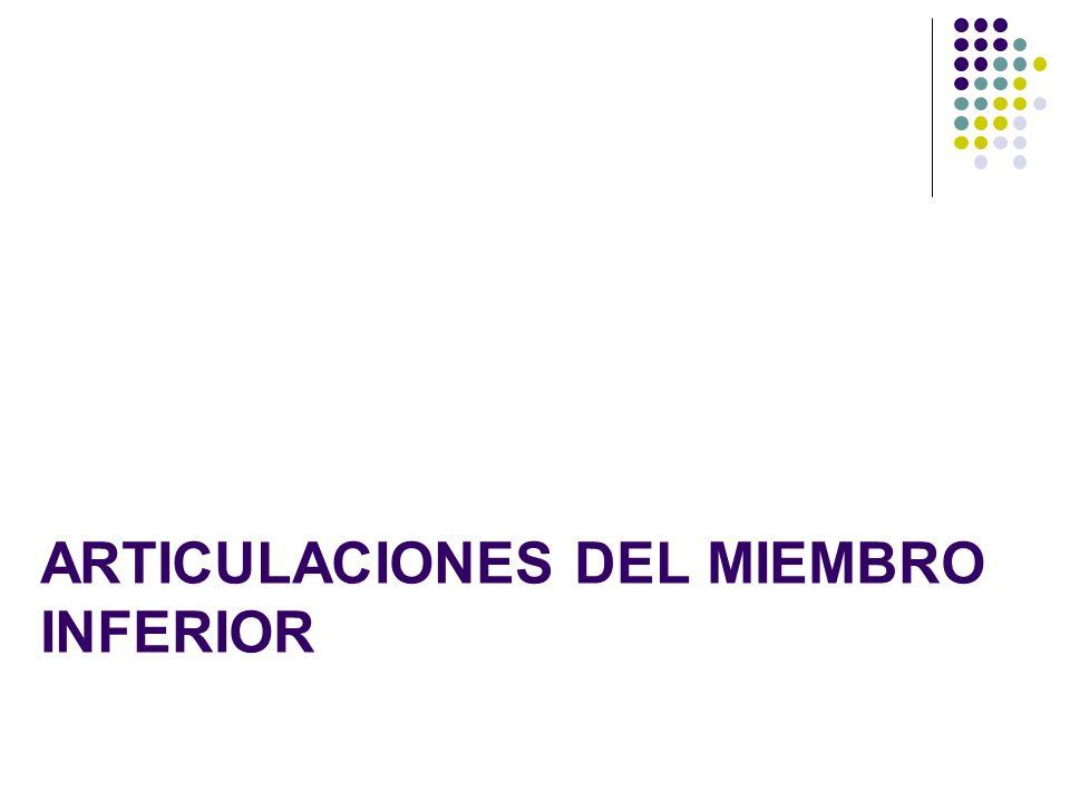 ARTICULACIONES DEL MIEMBRO INFERIOR