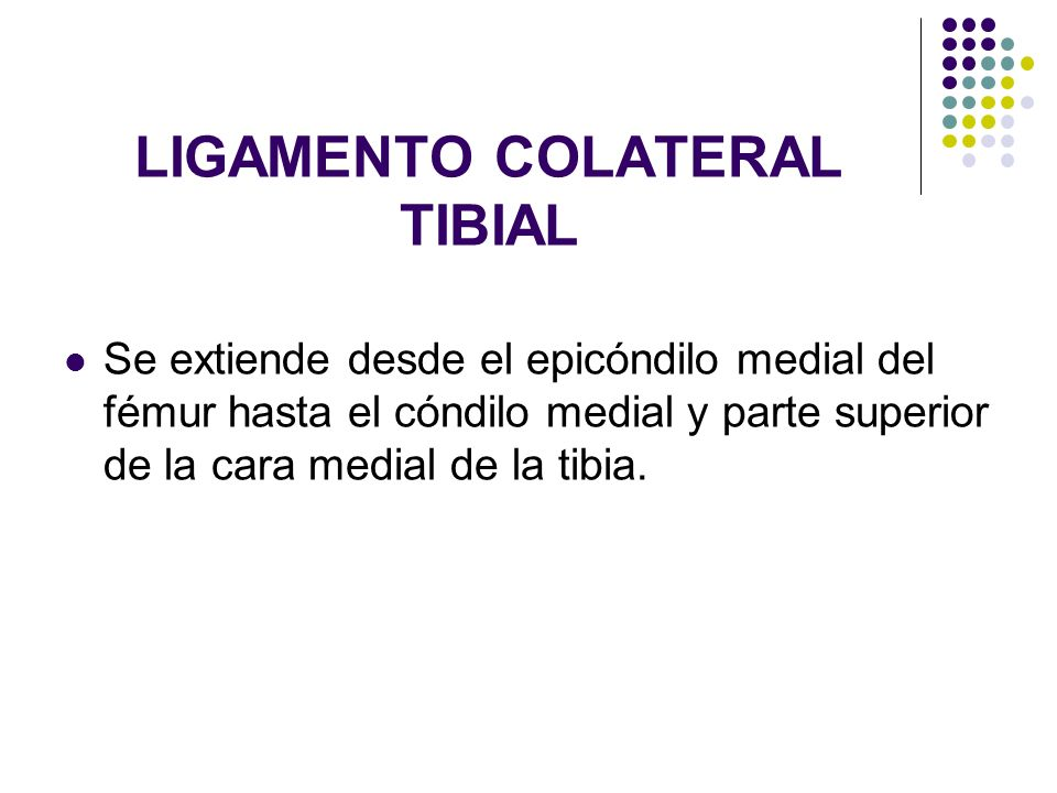 LIGAMENTO COLATERAL TIBIAL