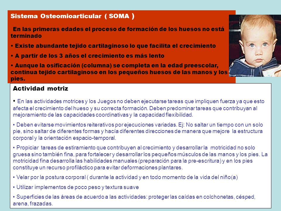 Sistema Osteomioarticular ( SOMA )