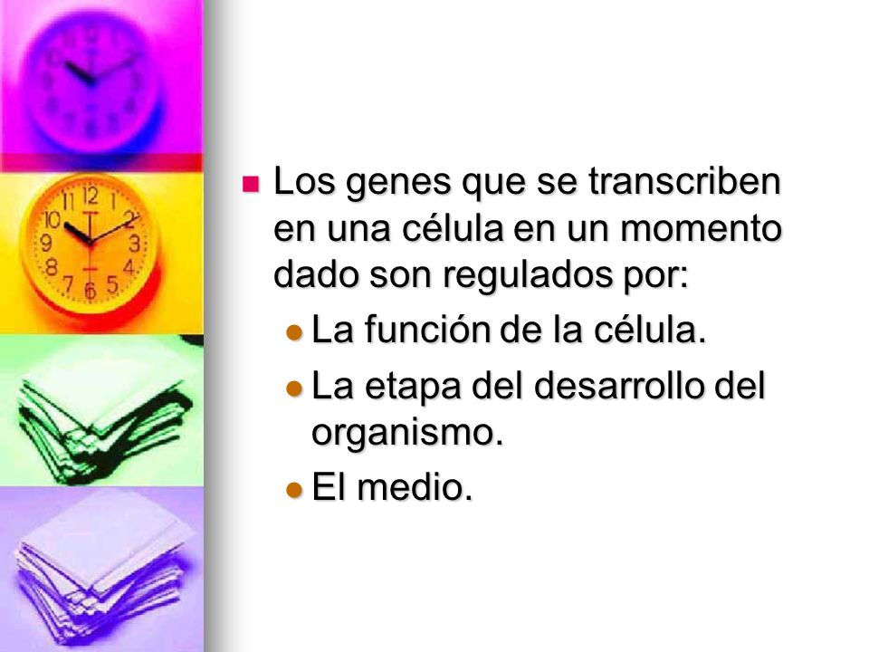 Los genes que se transcriben en una célula en un momento dado son regulados por: