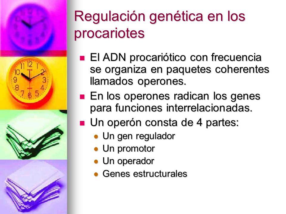 Regulación genética en los procariotes