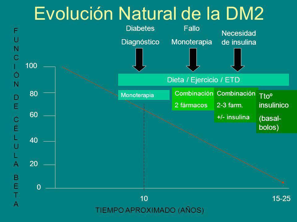 Evolución Natural de la DM2