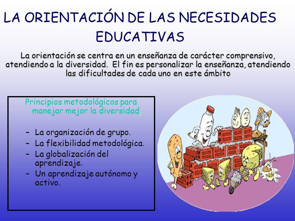 LA ORIENTACIÓN DE LAS NECESIDADES EDUCATIVAS
