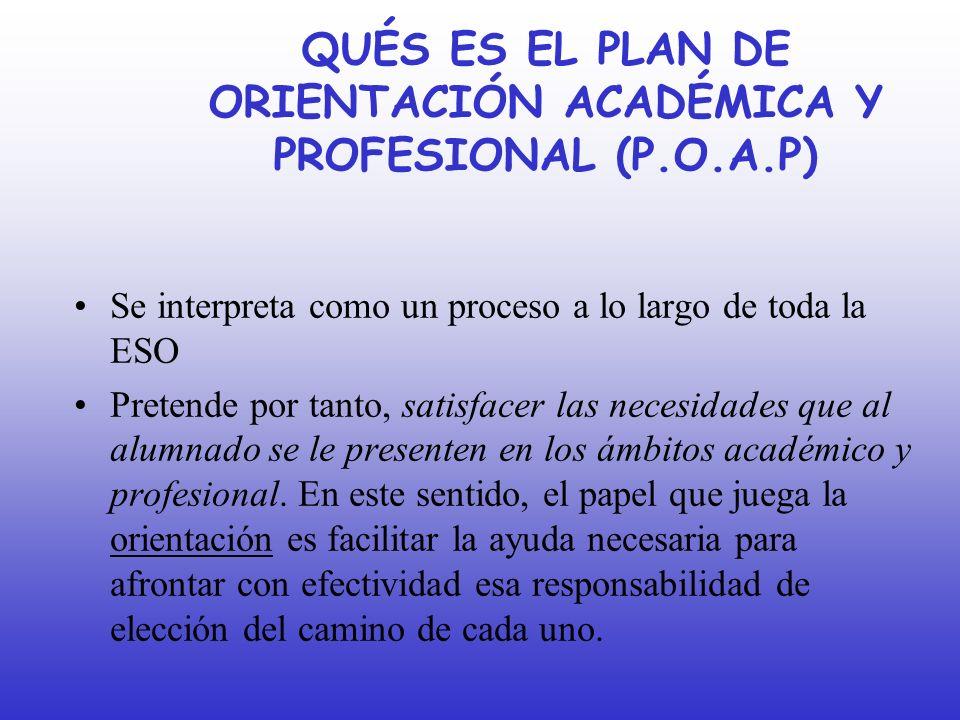 QUÉS ES EL PLAN DE ORIENTACIÓN ACADÉMICA Y PROFESIONAL (P.O.A.P)