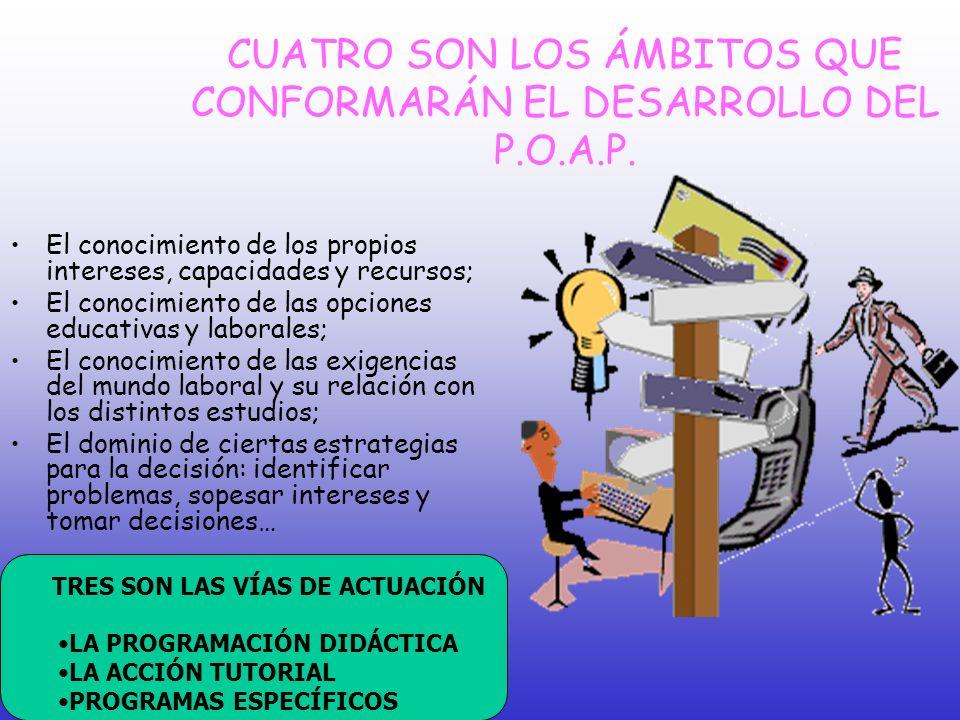 CUATRO SON LOS ÁMBITOS QUE CONFORMARÁN EL DESARROLLO DEL P.O.A.P.