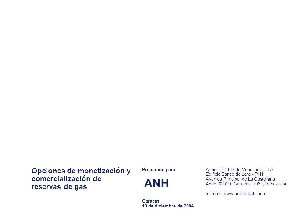 Opciones de monetización y comercialización de reservas de gas