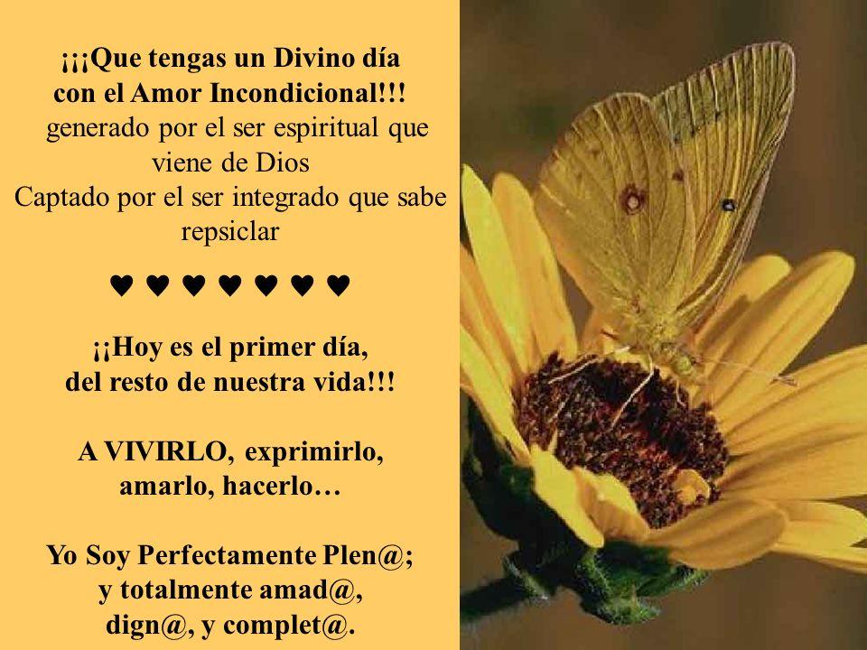 ¡¡¡Que tengas un Divino día con el Amor Incondicional!!!