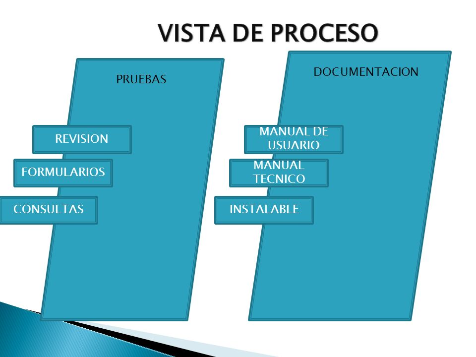 VISTA DE PROCESO DOCUMENTACION PRUEBAS REVISION MANUAL DE USUARIO