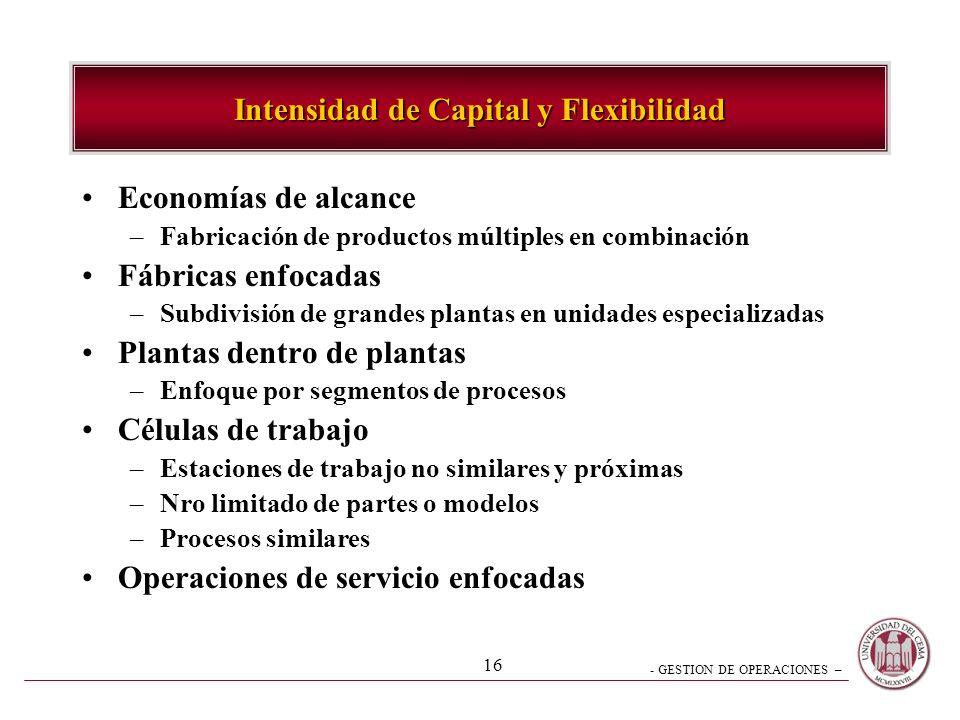 Intensidad de Capital y Flexibilidad