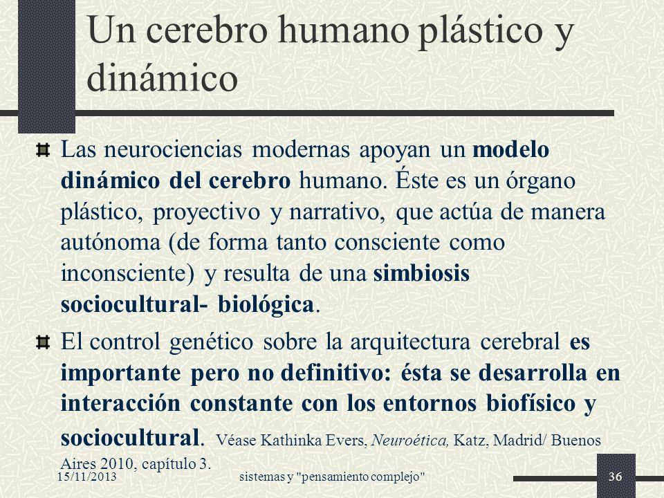 Un cerebro humano plástico y dinámico