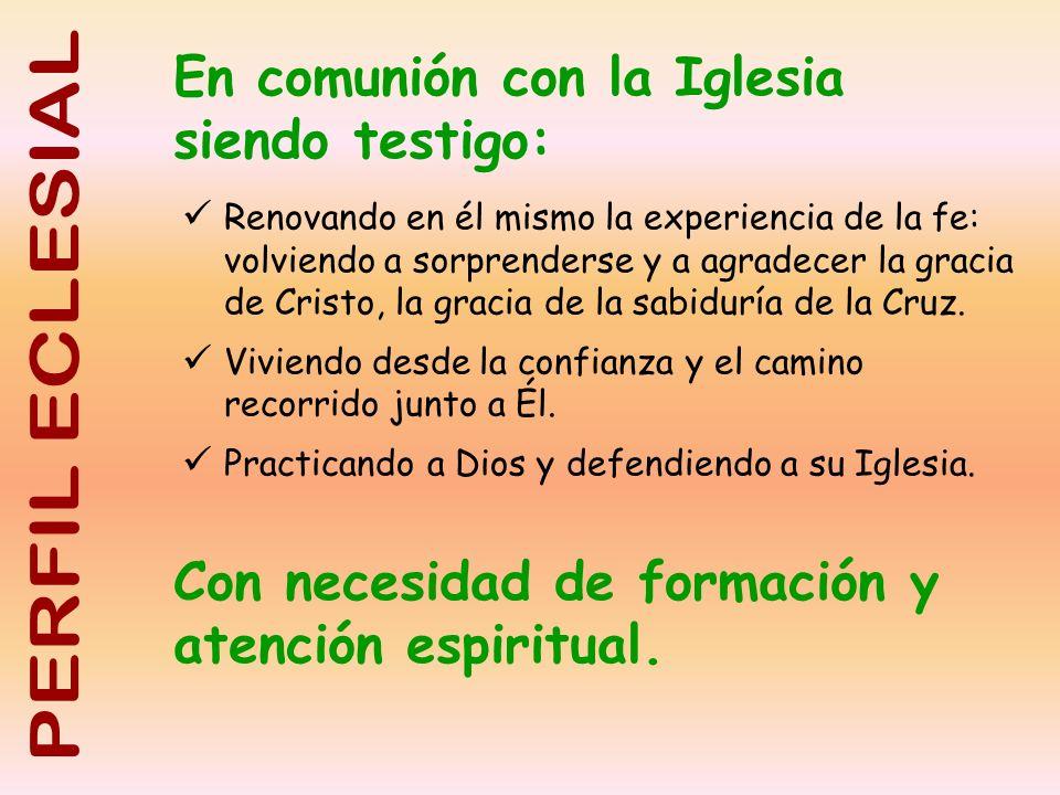 En comunión con la Iglesia siendo testigo: