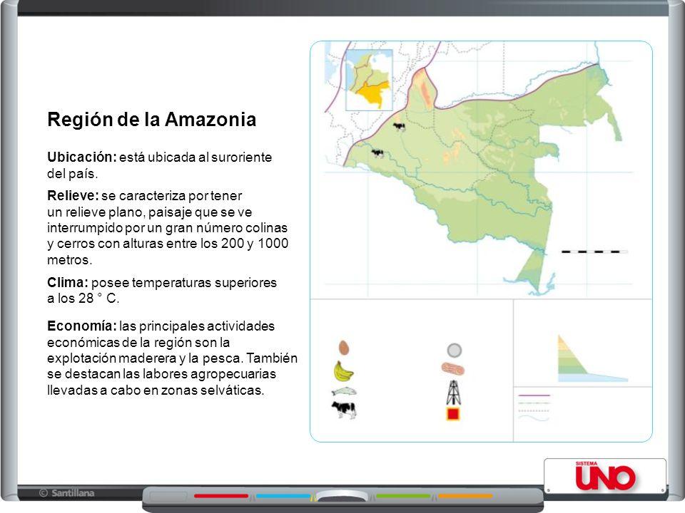 Región de la Amazonia Ubicación: está ubicada al suroriente del país.