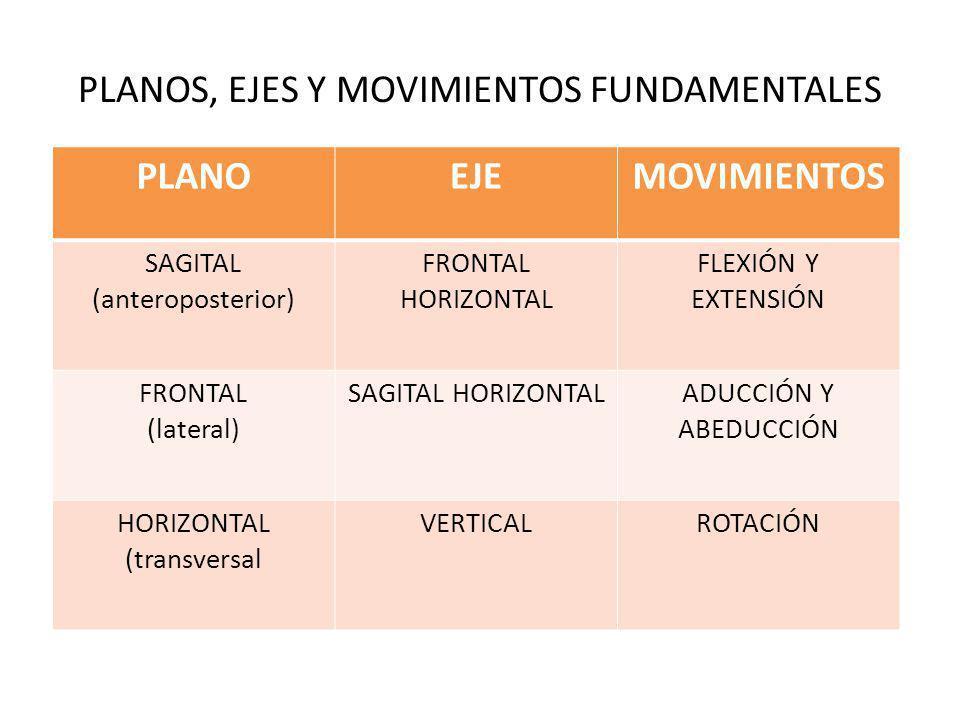 PLANOS, EJES Y MOVIMIENTOS FUNDAMENTALES